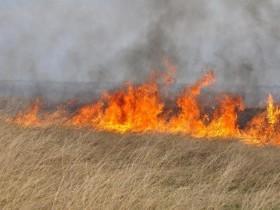 Управление Россельхознадзора по Республике Башкортостан в связи с наступлением пожароопасного периода и проведением весенне-полевых работ информирует